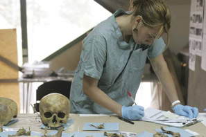 How to become a forensic anthropologist