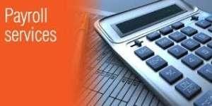 Director Payroll Service job description, duties, tasks, and responsibilities