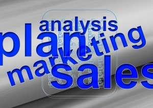 Senior Business Analyst job description, duties, tasks, and responsibilities
