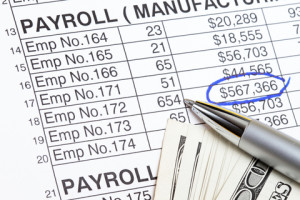 Payroll Administrator job description, duties, tasks, and responsibilities