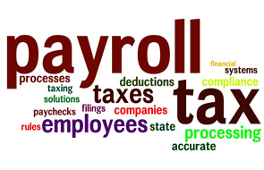 Payroll Tax Implementation Coordinator job description, duties, tasks, and responsibilities