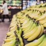 Supermarket Store Manager Job Description Example