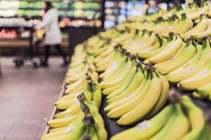 Supermarket Store Manager job description, duties, tasks, and responsibilities