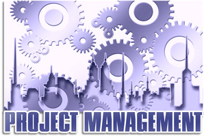 How to become a Project Risk Manager