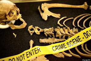 Forensic anthropologist job description, duties, tasks, and responsibilities