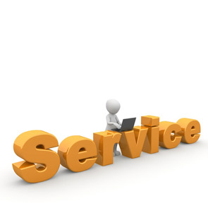 Customer service resume summary