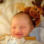 Neonatal Clinical Nurse Specialist Job Description, Duties, and Responsibilities