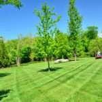 Grounds Maintenance Worker Job Description, Duties, and Responsibilities