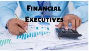 Presenting financial information to senior executives.