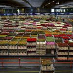 Warehouse Storekeeper Job Description, Key Duties and Responsibilities