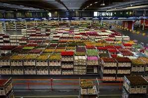 Warehouse Storekeeper job description, duties, tasks, and responsibilities.