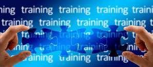 Training Facilitator job description, duties, tasks, and responsibilities.