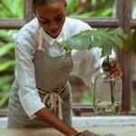 Homemaker Job Description, Key Duties and Responsibilities