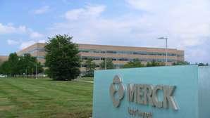 Merck Hiring Process, Job Application, Interview, and Employment