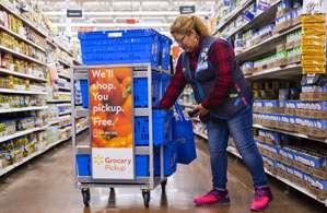 Walmart E-Commerce Personal Shopper Job Description, Key Duties and Responsibilities.