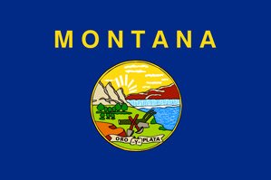Montana Software Engineer Salary and How to Increase It.
